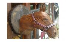Pferdekopf2--9-7
